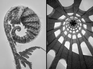 Architecture follows Nature